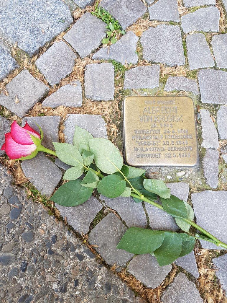 Stolperstein Putzaktion zum Gedenken an die Opfer des Naziterrors